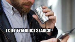 Voice Search - czy warto optymalizować? Statystyki.